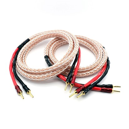 Hi fi audio speaker cable Platinium series TAGA-Harmony